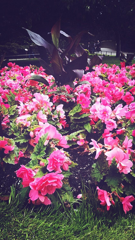 PicsArt_09-13-09.57.06