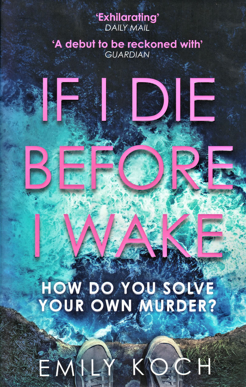if I die before I wake book